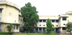 Ramjas Sr. Sec. School No. 5 [Ramjas Foundation : www.ramjasfoundation.com]